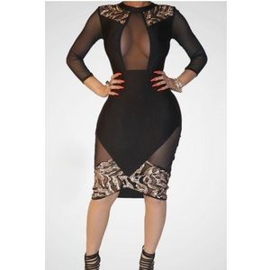 Black Mesh Sequined Party Dress